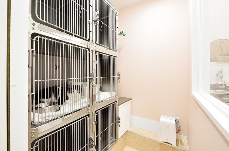 猫専用入院室(ホテル)