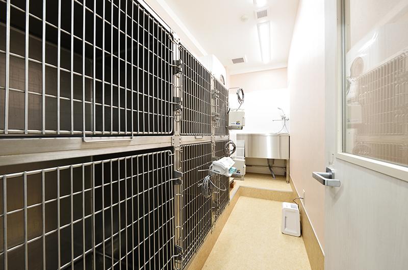 犬専用入院室(ホテル)
